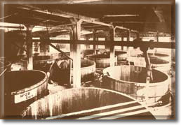 Vats in the plant